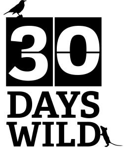 30DAYSWILD_ID1 black