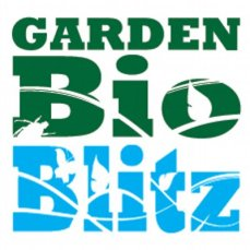 Garden Bioblitz