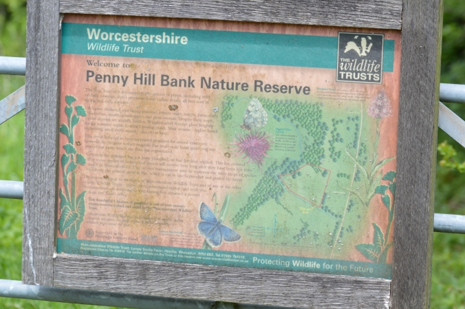 Penny Hill Sign