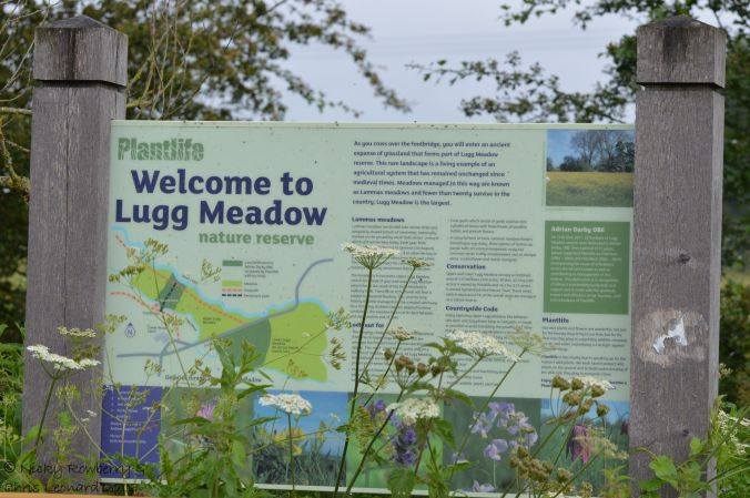 Lugg meadow sign