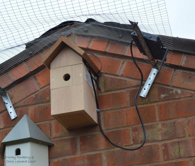 birdbox-system